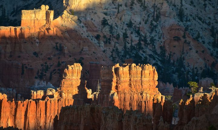 Bryce Hoodoos at Sunset - Mark Scott Thompson