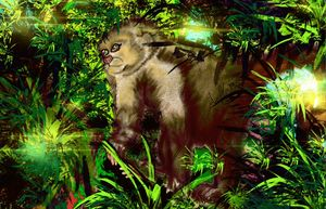 Monkey Vision