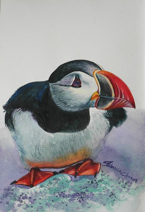 Puffins - Gabriela's art collections