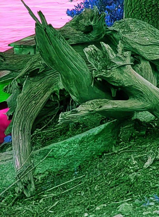 The Turtle has landed. - Helen DiQuinzios Digital Art