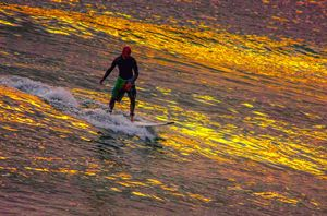 surfing on gold