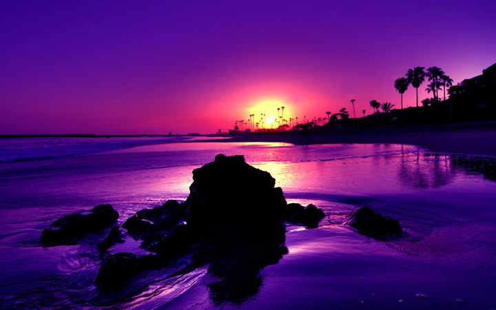 Sunset - Antonia C.