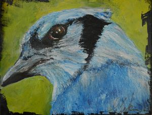 The Blue Jay - Timeless Art On Canvas