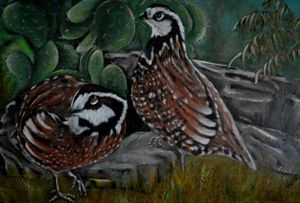 Bobwhite Quails - Timeless Art On Canvas