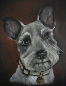 Schnauzer No.3 - Timeless Art On Canvas