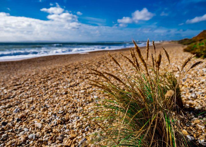 shingle beach - nicspics photography