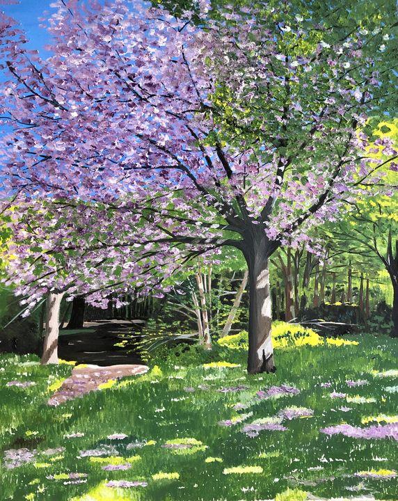 Cherry Blossom in Full Bloom - MaggieJukesArt