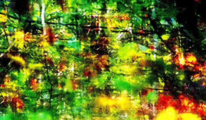 Forested Grove - MammaTrain