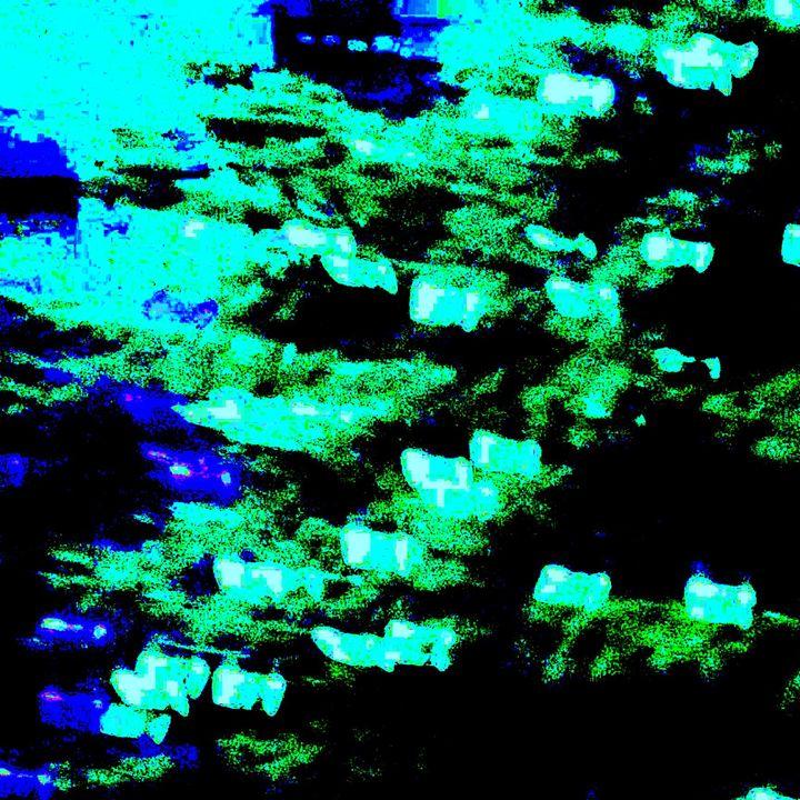 Night Branches - MammaTrain