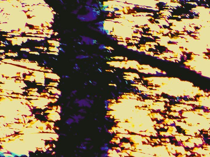 Tree Trunk - MammaTrain