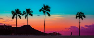 Paradise Sunrise in Waikiki - Elements of Bliss