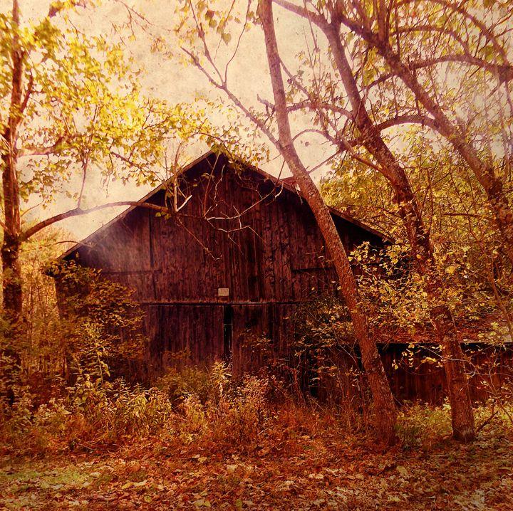 Backroad Barn - David Neace Artist