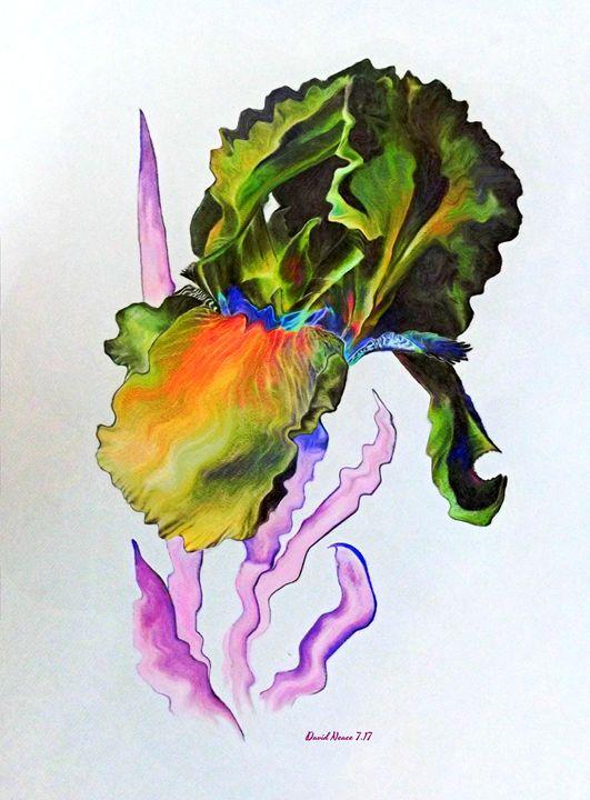 Iris of a Different Color - David Neace Artist