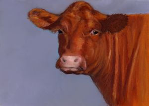 Red Cow, Oil Pastel Painting, Farm