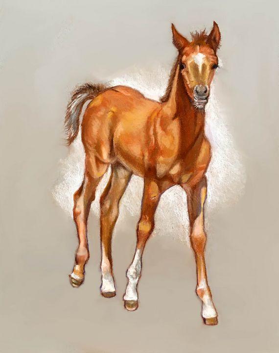 Long-legged Foal in Pastel - Joyce's Art