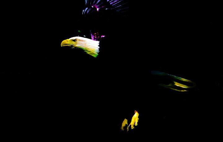 Regal - Joe Campbell's Photo Art Gallery