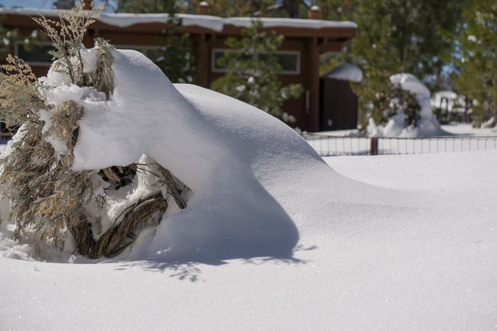 Perfect Snow - Digital Art