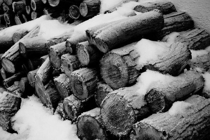 Put another log - Christine Solomon