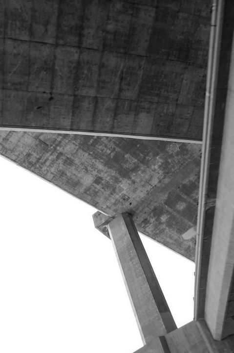101 Freeway - Christine Solomon