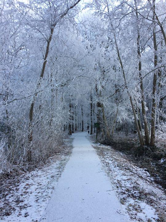Frozen arch - Ingrid Huetten Photography