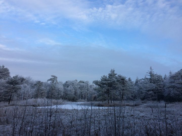 Blue Pond - Ingrid Huetten Photography