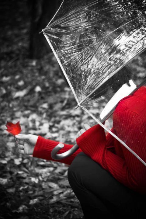 Monochrome Autumn - Fantasy Productions