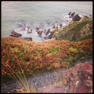 Bray Mountain Walk