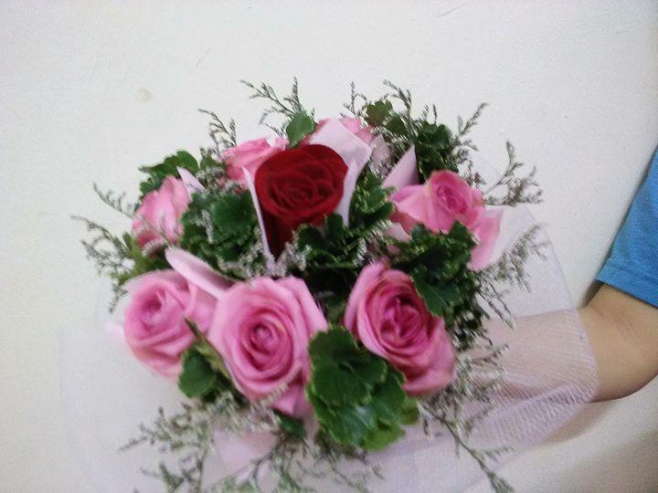 Roses - Neazera