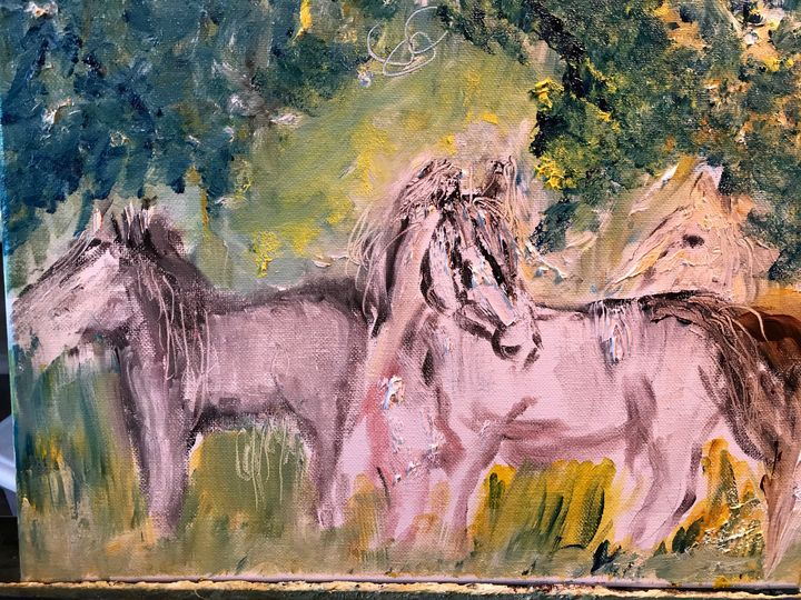 Wild horses- Arabians Free - Deborahmillsopen door