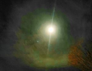 The Spring Moon - 2020