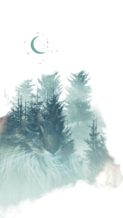 Forest Cat - The Adhizen