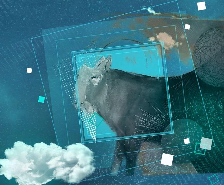 Elemental Goats - Air - The Adhizen