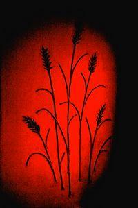 Fine Art Wheat Sculpture Silhouette