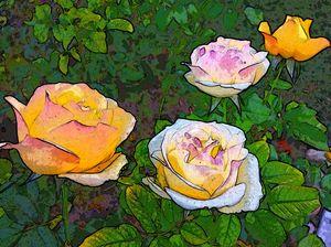 Magic Hour Flowers (MAK)