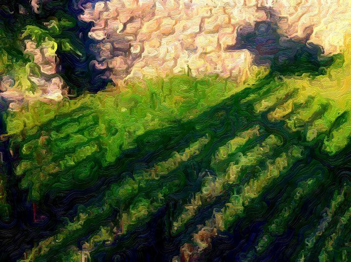 Shadow Fence - MAK