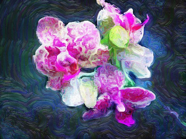 Trans Orchid (MAK) - MAK