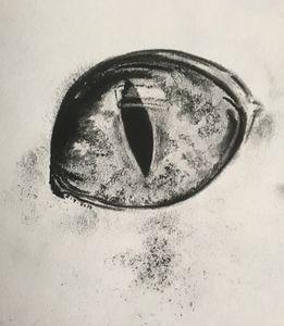 Dragons' Eye