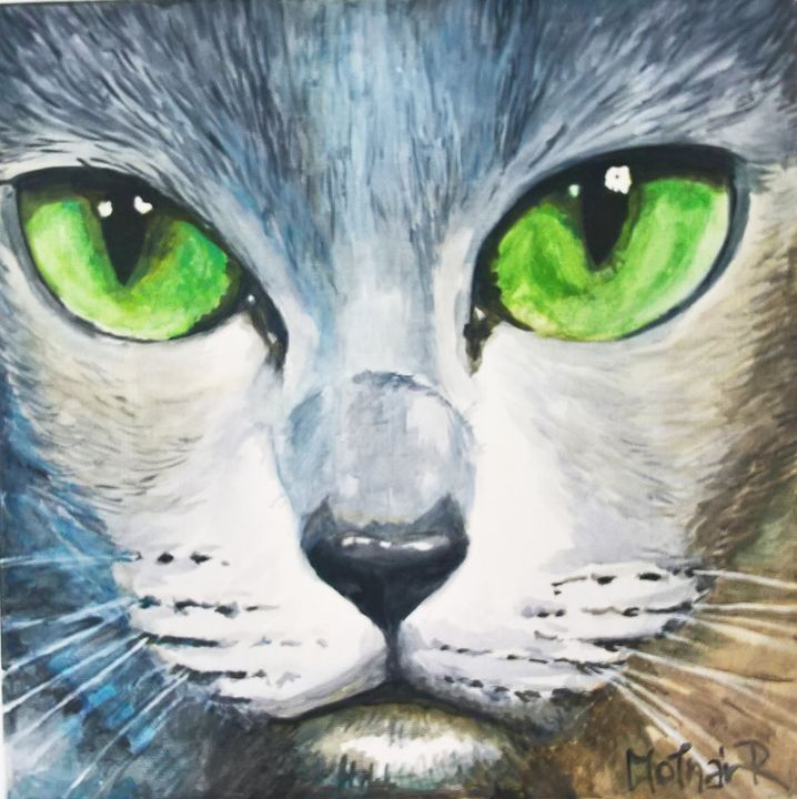 Nature comes through the eyes of cat - Roll'Inspirat