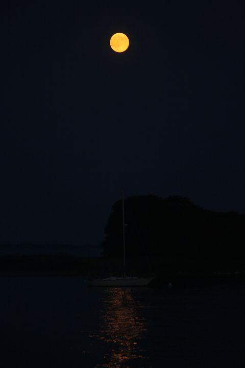 Moon rise - Elizabeth Manning