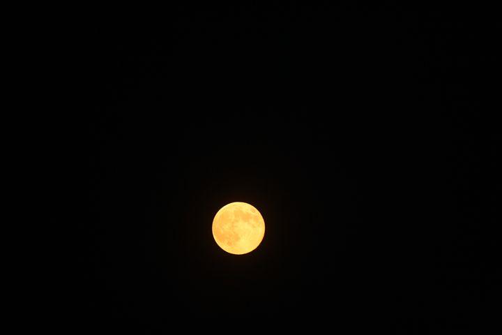 Golden Moon - Elizabeth Manning