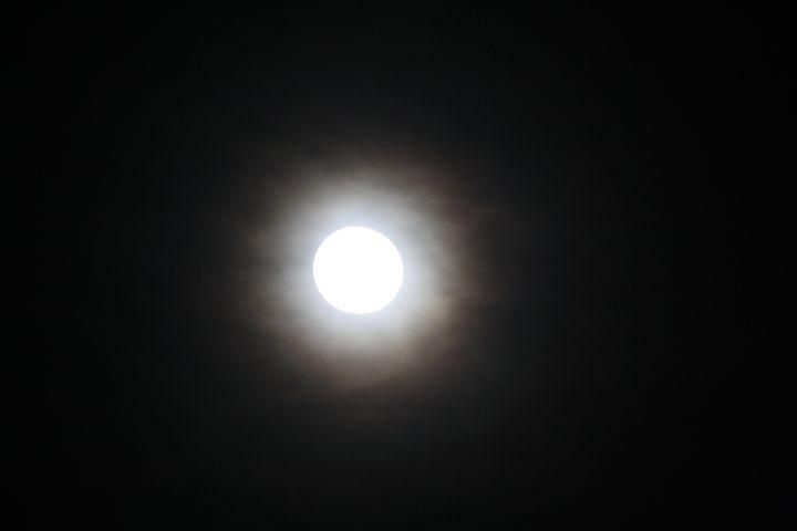 Moon Glare - Elizabeth Manning