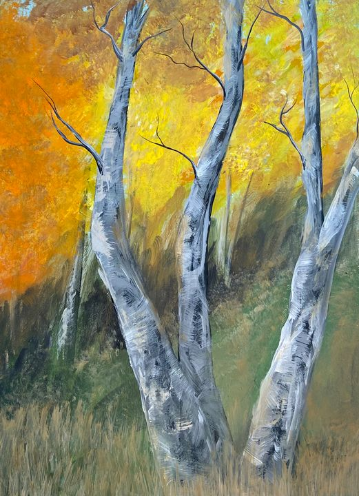 Birch Trees - Acrylic Canvas Paintingd