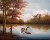 "20"" x 24"" Oil on Canvas"