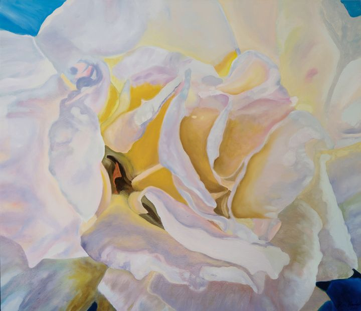 White Rose - Ron Harris Art