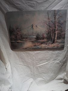 Oil on Canvas Nature Scene.