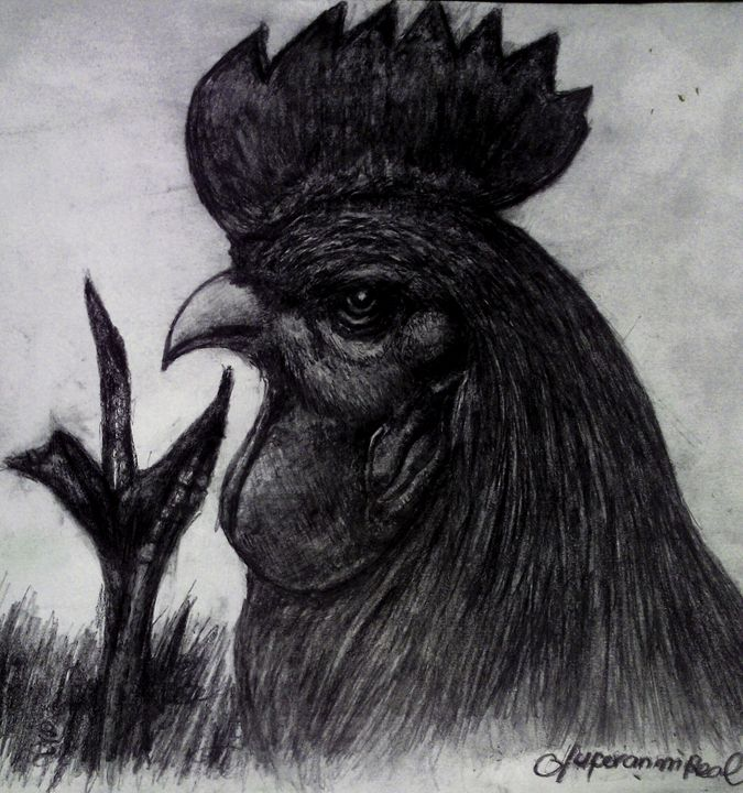 The Cock - OLUFERANMIREAL