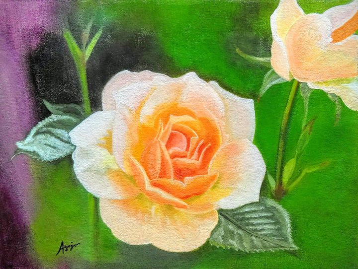 Orange Rose - Agojo art