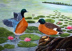 Two Ducks on a Pond