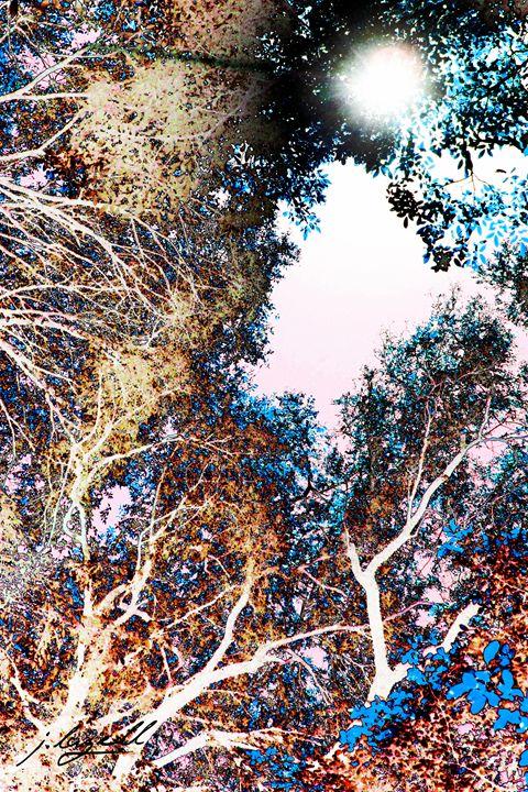 Rainbow Colored Universe - j.lazell