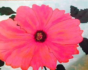 Hibiscus Blossom